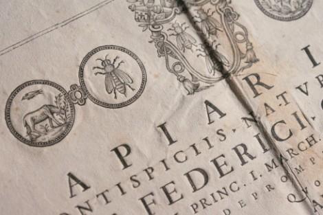 seventeenth century book2